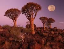 Namibia © Christian Heeb